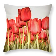 Red Tulip Field In Portrait Format. Throw Pillow