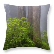 Redwoods By Crescent City 7 Throw Pillow