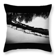 Reflected Bridge Throw Pillow