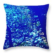 Reflection On A Blue Automobile 3 Throw Pillow