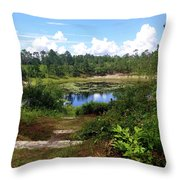 Reflection On The Lake Throw Pillow