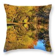 Reflections Of Autumn Throw Pillow