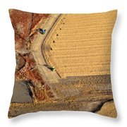 Rendezvous Throw Pillow by Carl Young
