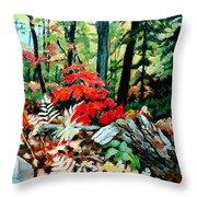 Resilient Maple Throw Pillow