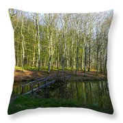Resort Bara - Bilogora No 6 Throw Pillow