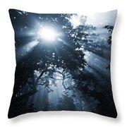 Rhapsody In Blue Throw Pillow by Michelle Wermuth