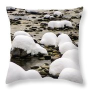 Rhine Winter Throw Pillow