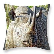 Rhino Zen Throw Pillow