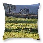 Ribblehead Station And Ingleborough North Yorkshire Throw Pillow