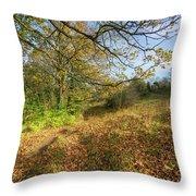 Richmond Autumn Throw Pillow