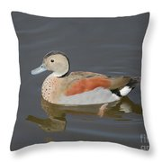 Ringed Teal Throw Pillow