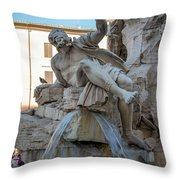 Rio De La Plata Throw Pillow