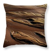 River Of Sand Throw Pillow