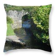 Rivers Merging Throw Pillow