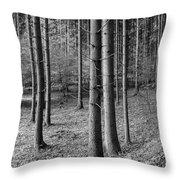 Road Passing Through Forest, Stuttgart Throw Pillow