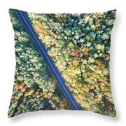 Road Through Colorful Autumn Forest Throw Pillow