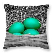 Robin's Nest Selective Throw Pillow
