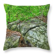 Rock On Green's Hill Throw Pillow