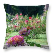 Rome Rose Garden Throw Pillow