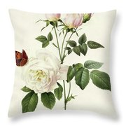 Rosa Bengale The Hymenes By Redoute Throw Pillow