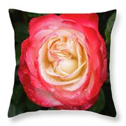 Rose And Rain - The Ice-cream Rose Throw Pillow
