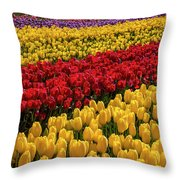 Row After Row After Row Of Tulips Throw Pillow