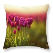 Rows Of Magenta Painterly Tulips Throw Pillow