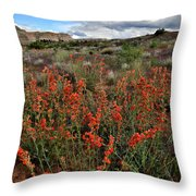 Ruby Mountain Wildflowers Throw Pillow by Ray Mathis