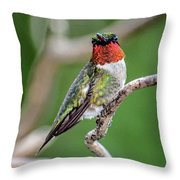 Ruby-throated Hummingbird In All His Glory Throw Pillow