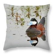 Ruddy Duck, Plumas County California Throw Pillow