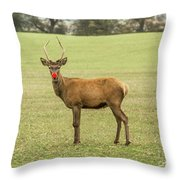 Rudolph The Red Nosed Reindeer Throw Pillow