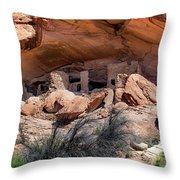 Ruins At Butler On The San Juan River  Throw Pillow