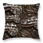 S Is For Snakes Throw Pillow
