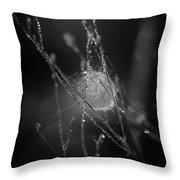 Sacrificial Throw Pillow by Michelle Wermuth