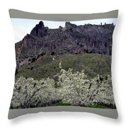 Saddle Rock And Apple Blooms Throw Pillow