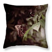 Safety Throw Pillow by Michelle Wermuth