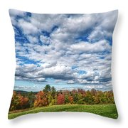 Sagamore Hill Throw Pillow