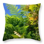 Salal Blooms Amongst The Ferns Throw Pillow