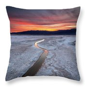 Salt Creek Flats Throw Pillow