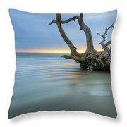 Salty Sea Dreamscape Throw Pillow by Debra and Dave Vanderlaan