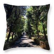 San Paolo Alle Tre Fontane Throw Pillow