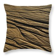 Sand Palmistry Throw Pillow