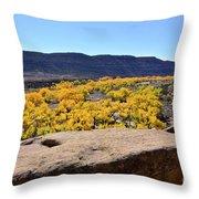Sandstone Above Golden River Desert Landscape Throw Pillow