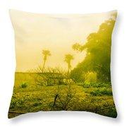 Sapa Landscape, Vietnam Throw Pillow