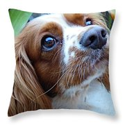 Say Please Throw Pillow
