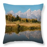 Schwabacher's Landing Throw Pillow