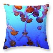 Sea Nettle Jellies Throw Pillow