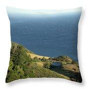 Sea View Pond Throw Pillow