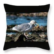 Seagull Carrying Snail Throw Pillow
