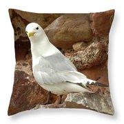 Seagull On Rock Throw Pillow
